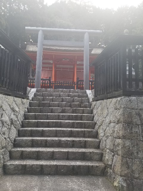 f:id:yuri89:20190103233242j:image