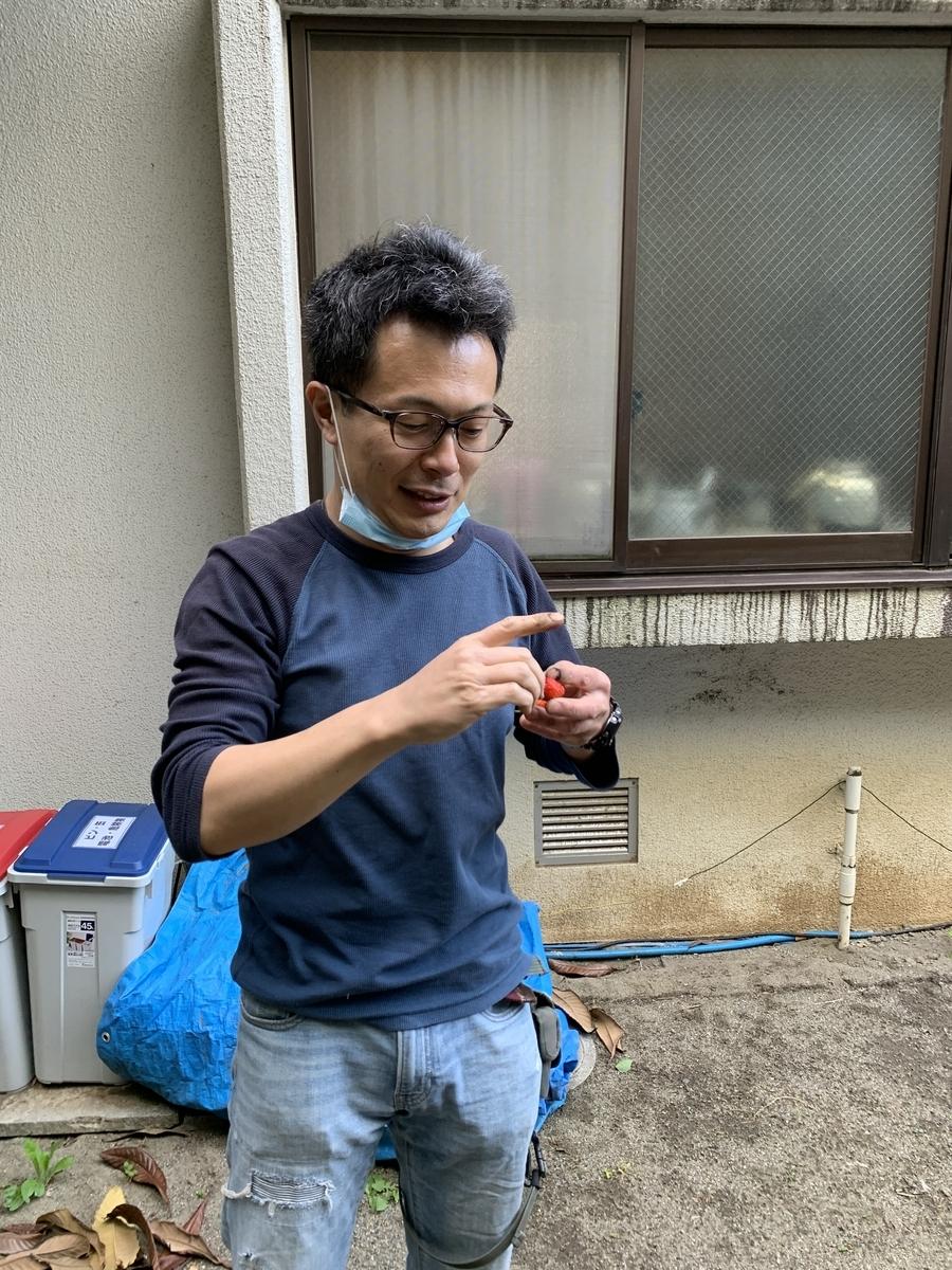 f:id:yurigaokamegumi:20200508101238j:plain