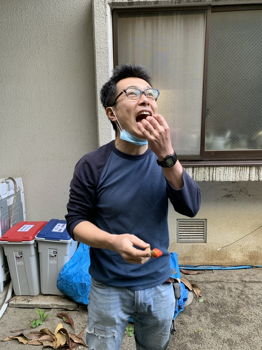 f:id:yurigaokamegumi:20200508101246j:plain