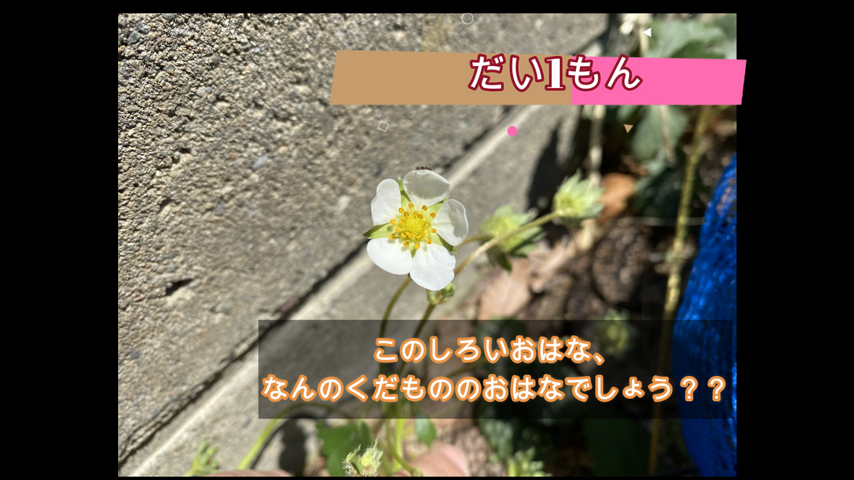 f:id:yurigaokamegumi:20200515104245p:plain