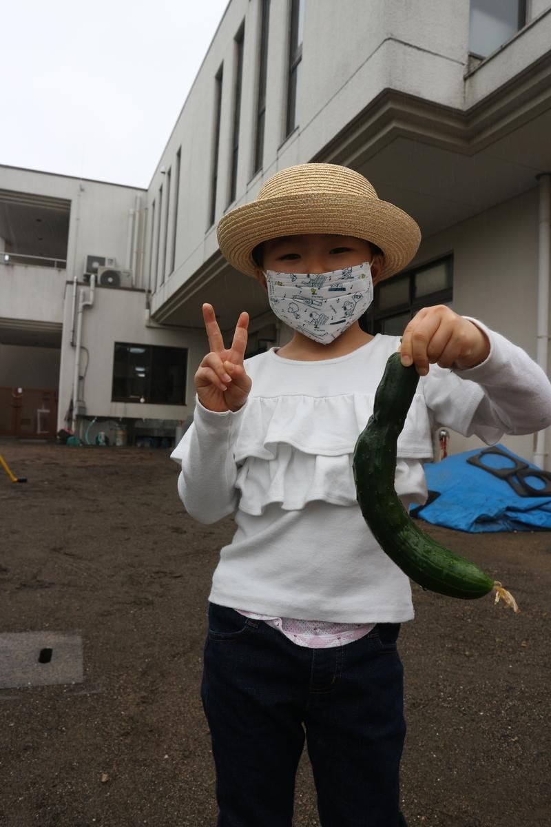 f:id:yurigaokamegumi:20200602155716j:plain