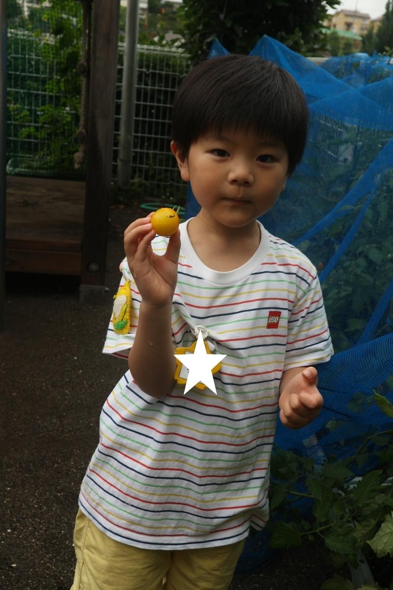 f:id:yurigaokamegumi:20200805103034j:plain