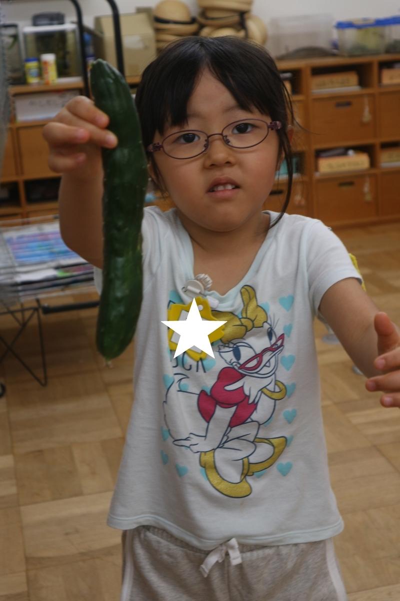 f:id:yurigaokamegumi:20200805103041j:plain