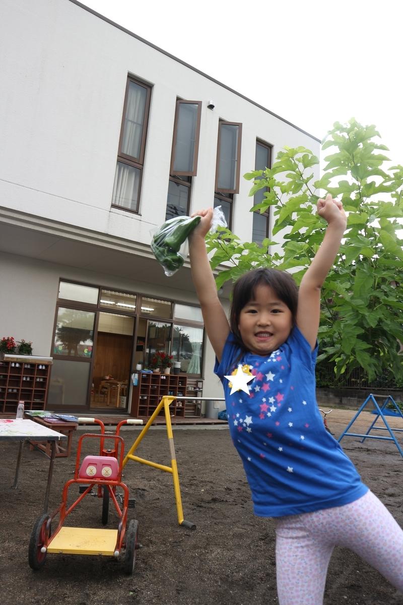 f:id:yurigaokamegumi:20200805103052j:plain