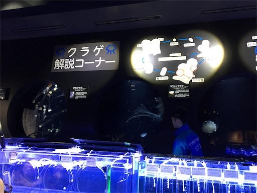 f:id:yurihonjo-kosodate:20190130134605j:image