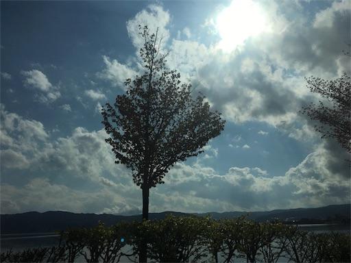 f:id:yurika2525yurika:20170504201459j:image