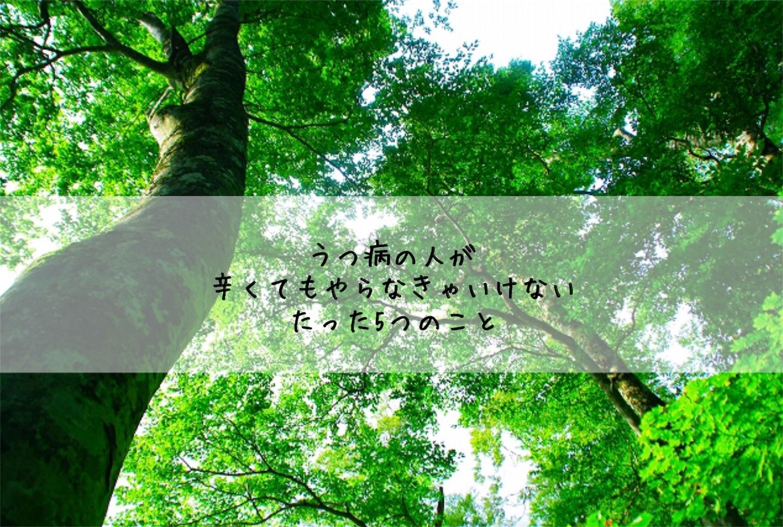 f:id:yurikaberry:20180208074556j:image