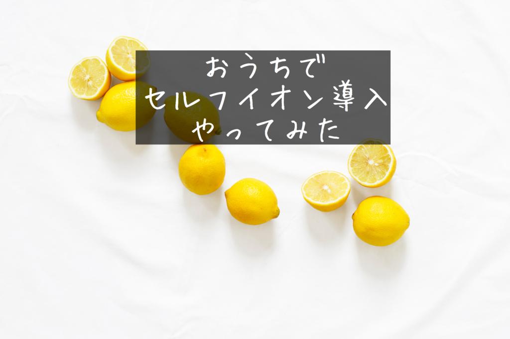 f:id:yurikablog:20170509145436j:plain