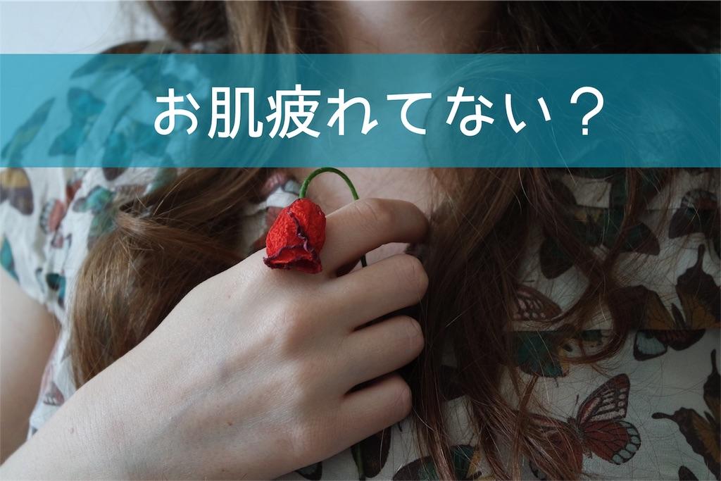 f:id:yurikablog:20170520105930j:image