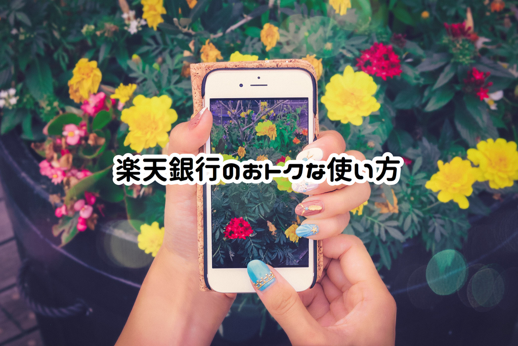 f:id:yurikablog:20190103230051j:plain
