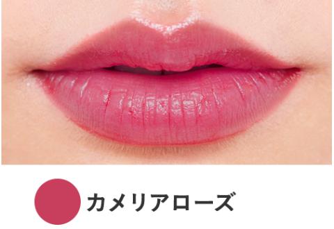 f:id:yurikablog:20191213224639p:plain