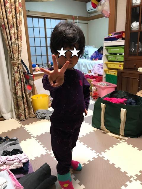 f:id:yurimaripapa:20180103001617j:plain