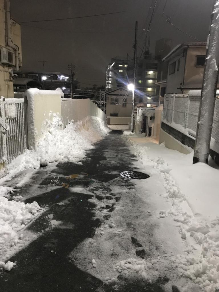 f:id:yurimaripapa:20180123010852j:plain