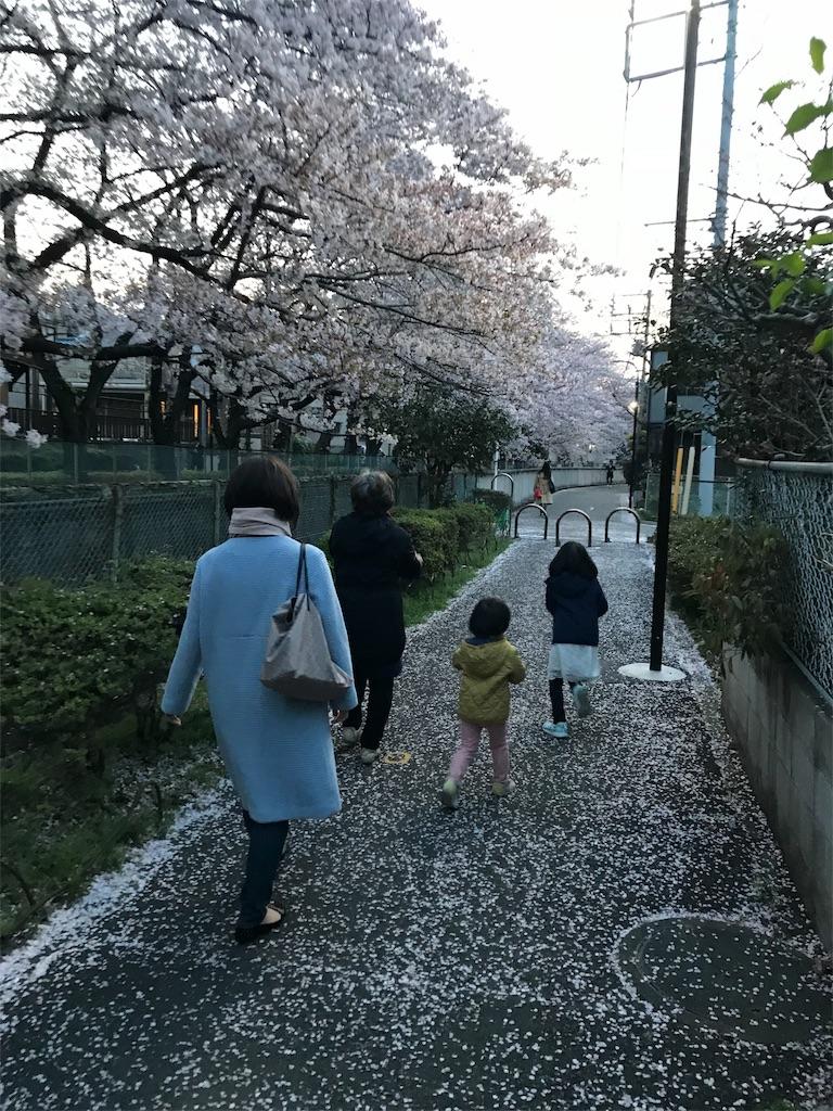 f:id:yurimaripapa:20180401081811j:image