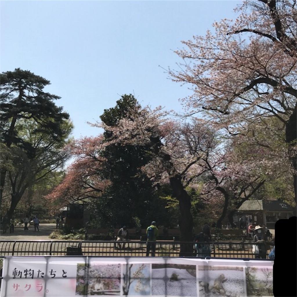 f:id:yurimaripapa:20180401163017j:image