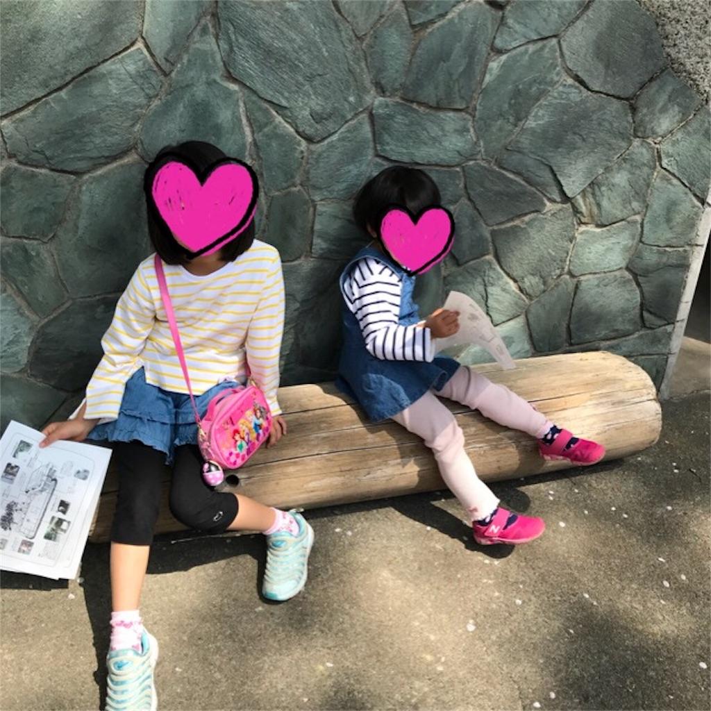 f:id:yurimaripapa:20180401163037j:image