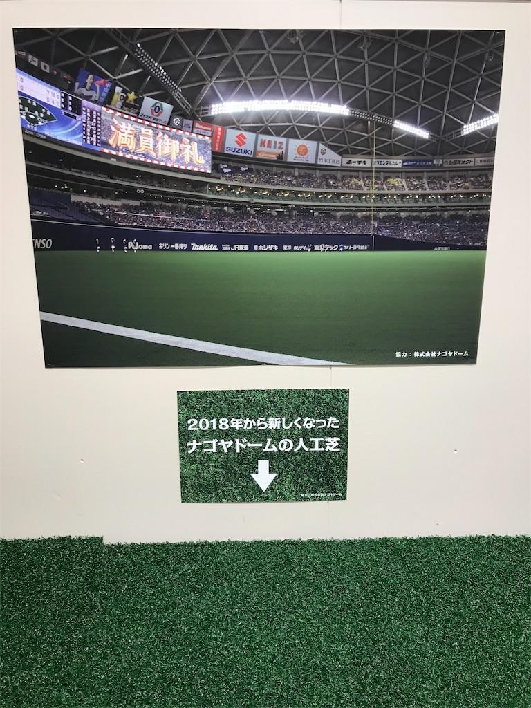 f:id:yurimaripapa:20180504094214j:image