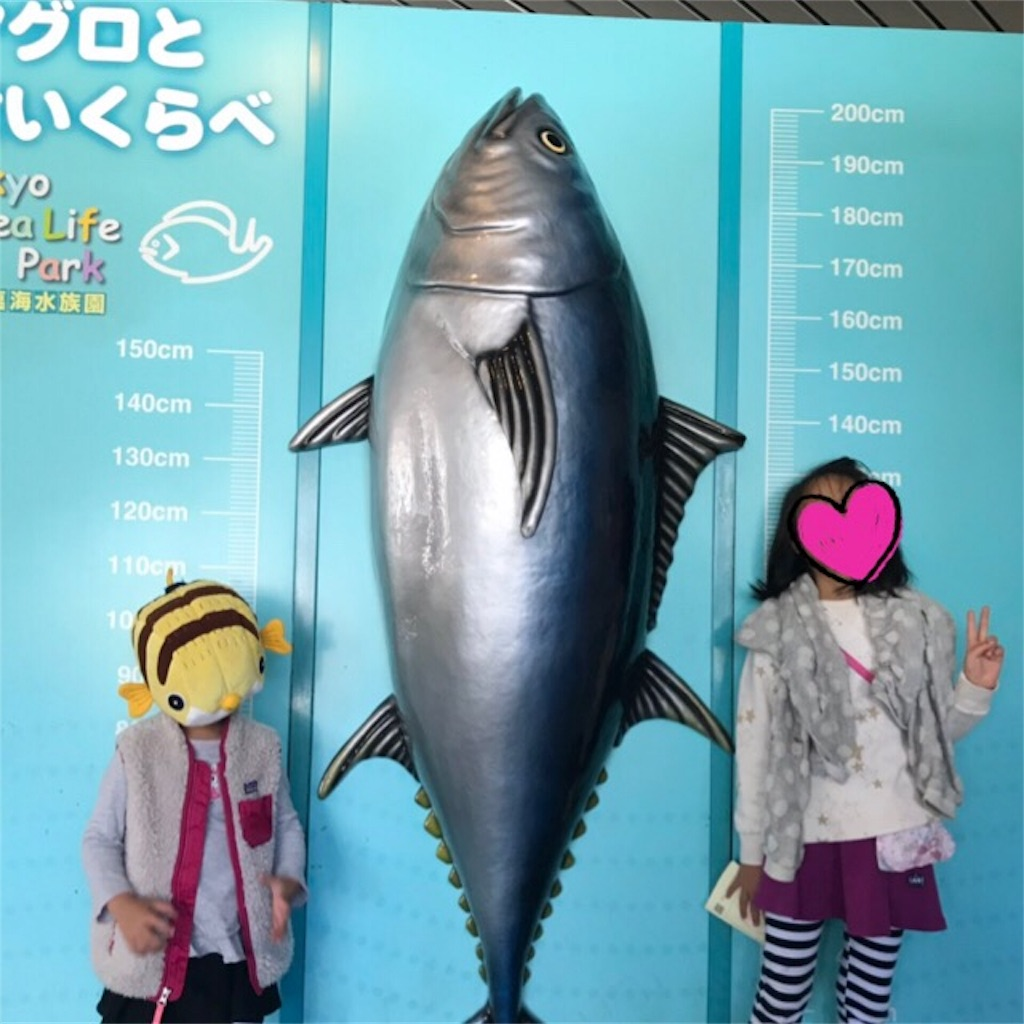 f:id:yurimaripapa:20181104075541j:image