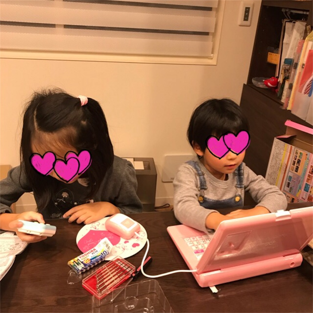 f:id:yurimaripapa:20181203135227j:image
