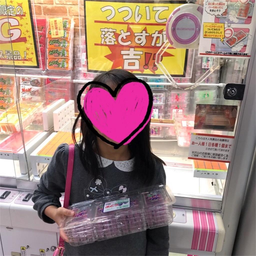 f:id:yurimaripapa:20190212104911j:image
