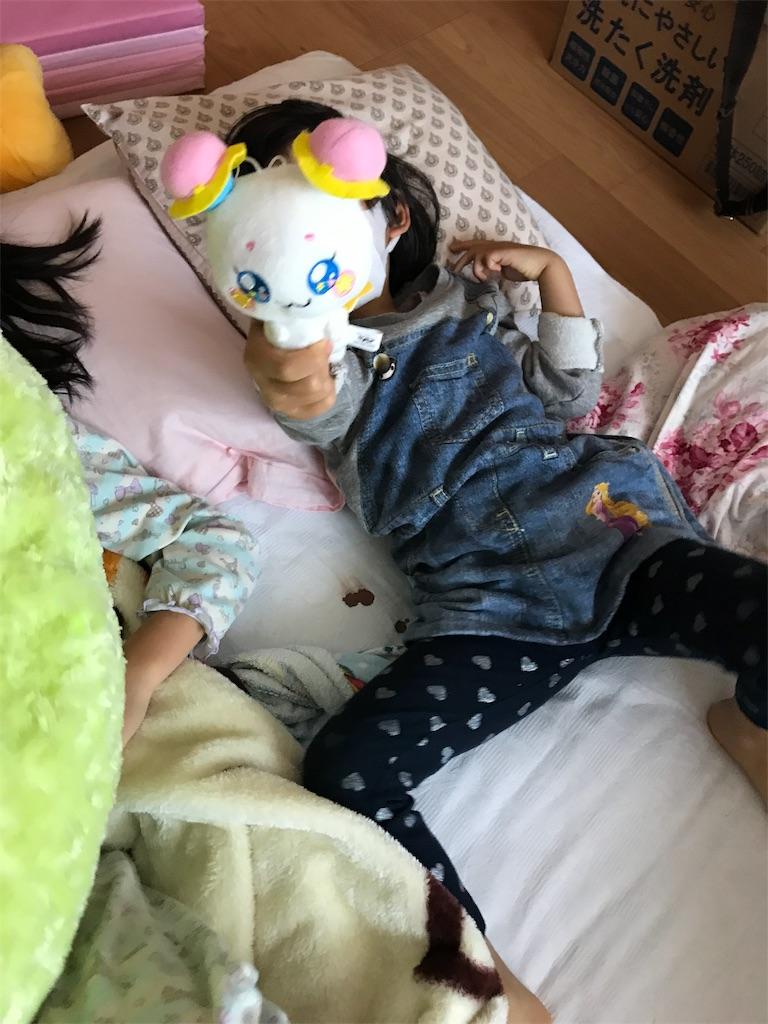 f:id:yurimaripapa:20190324084640j:image