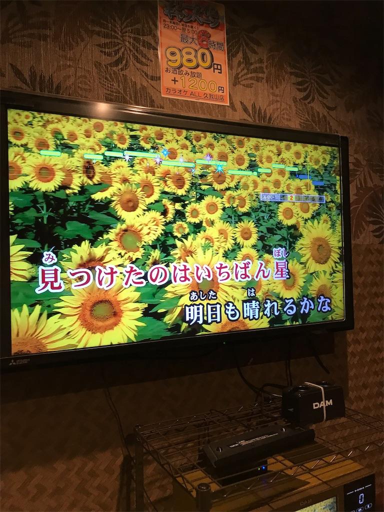 f:id:yurimaripapa:20190513170301j:image