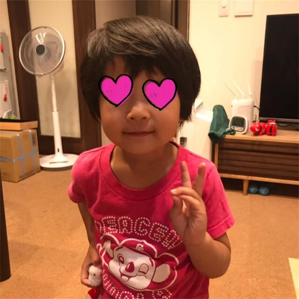 f:id:yurimaripapa:20190603083818j:image