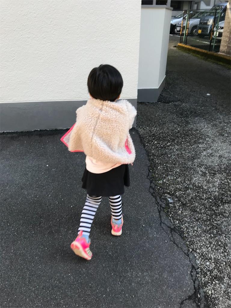 f:id:yurimaripapa:20191104235608j:image