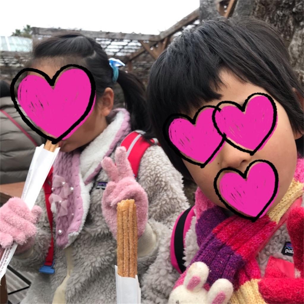 f:id:yurimaripapa:20200121001724j:image