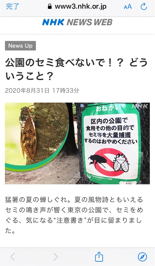 f:id:yurimaripapa:20200901010708j:image