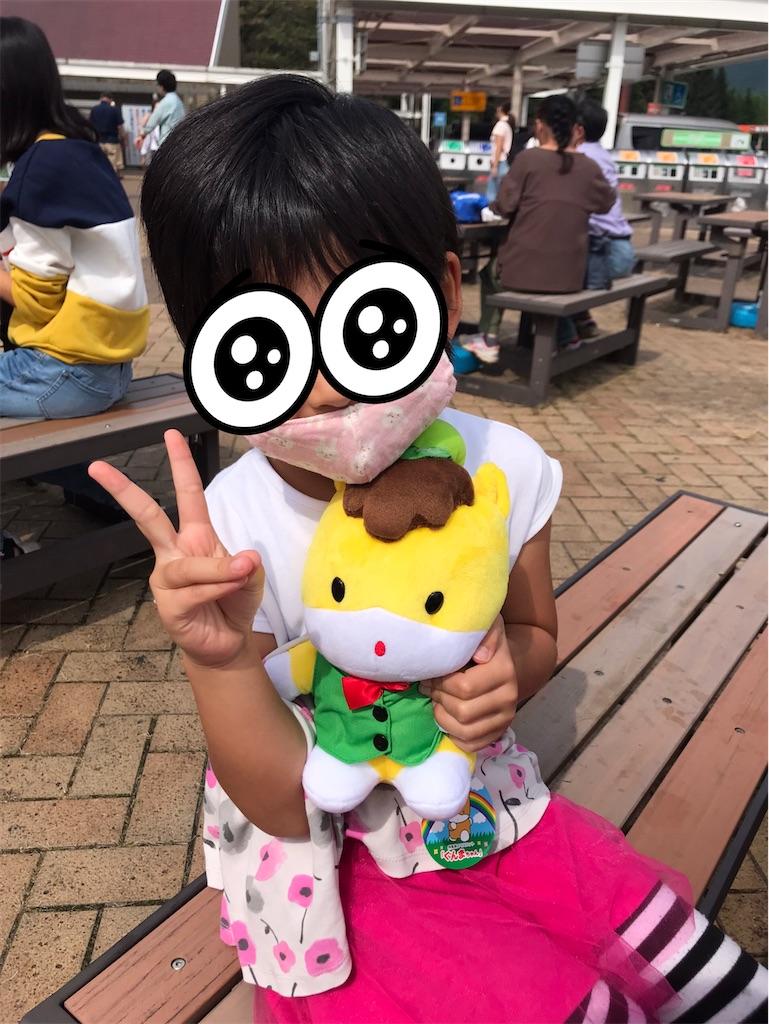 f:id:yurimaripapa:20200923112637j:image