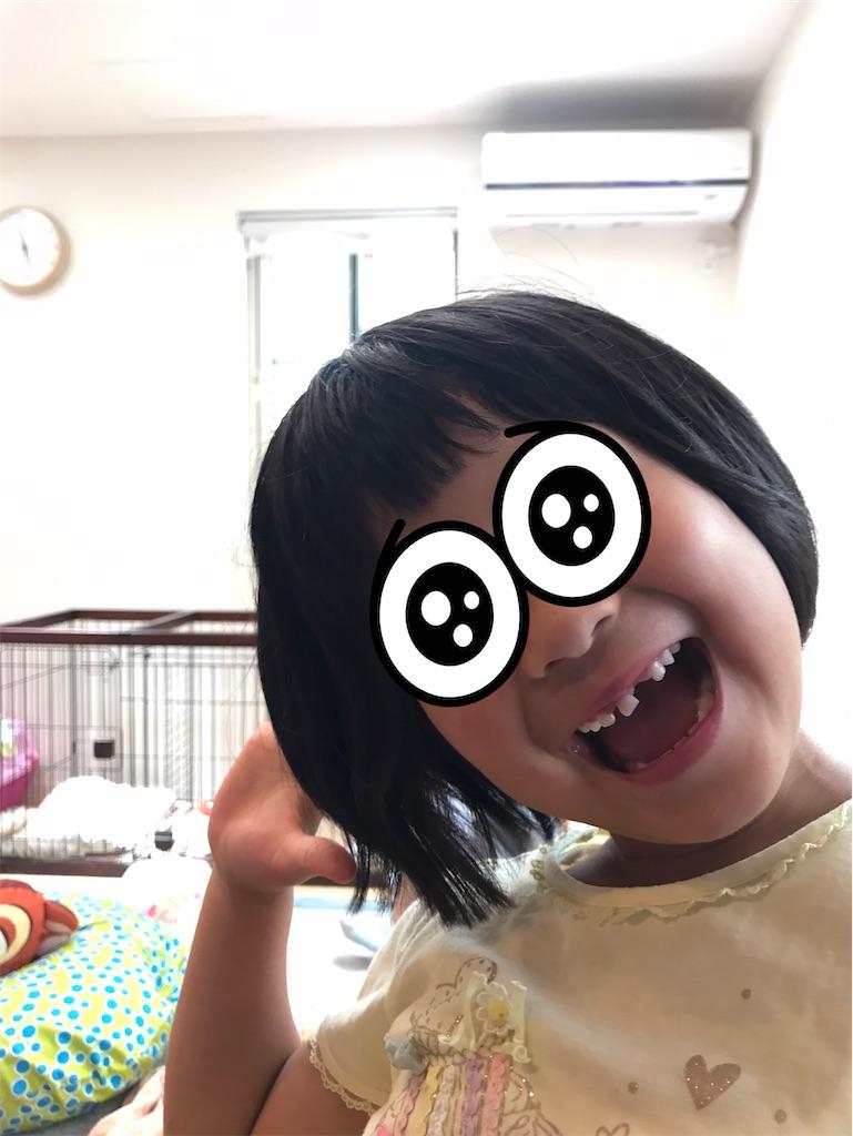 f:id:yurimaripapa:20210519191635j:image