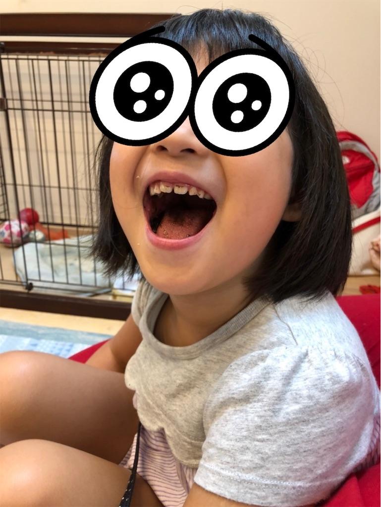 f:id:yurimaripapa:20210908114329j:image