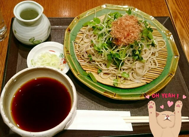 f:id:yurime-sf:20170313155020j:image