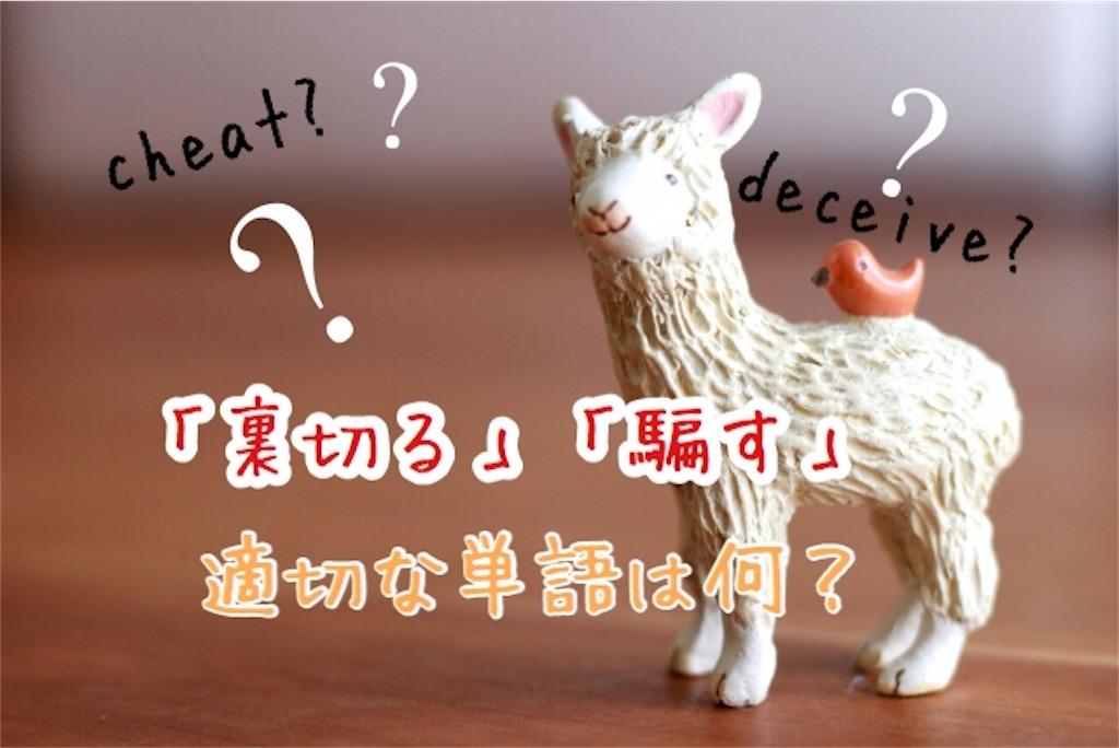 f:id:yurina12:20190621142638j:image