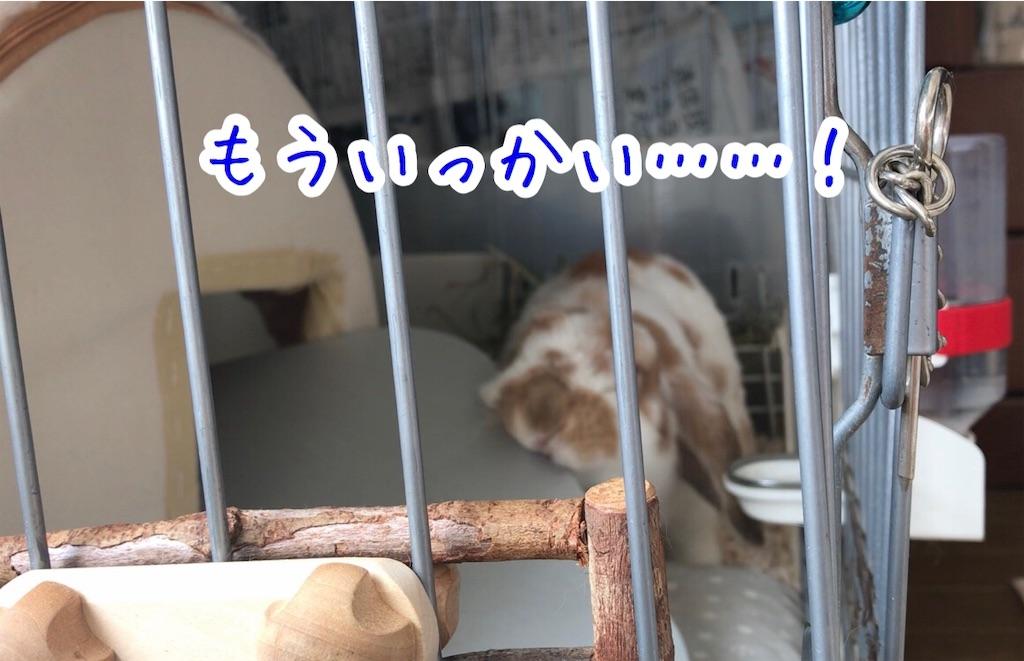 f:id:yurina12:20191126142946j:image:w350