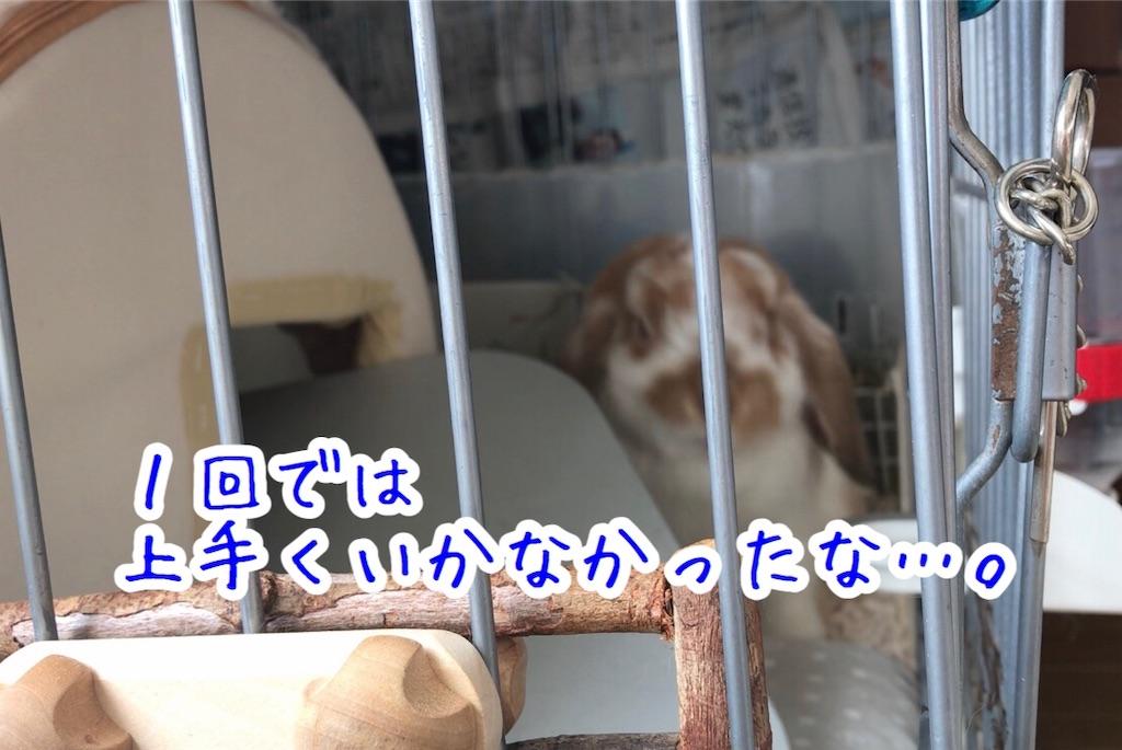 f:id:yurina12:20191126143107j:image:w350