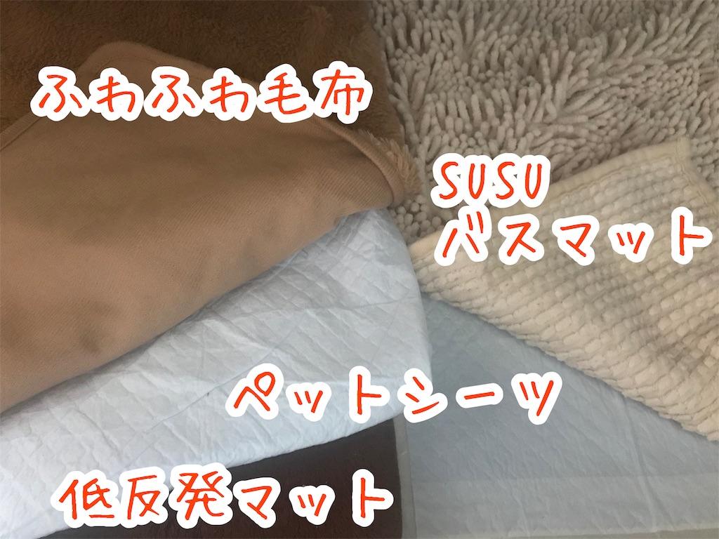 f:id:yurina12:20191127125921j:image