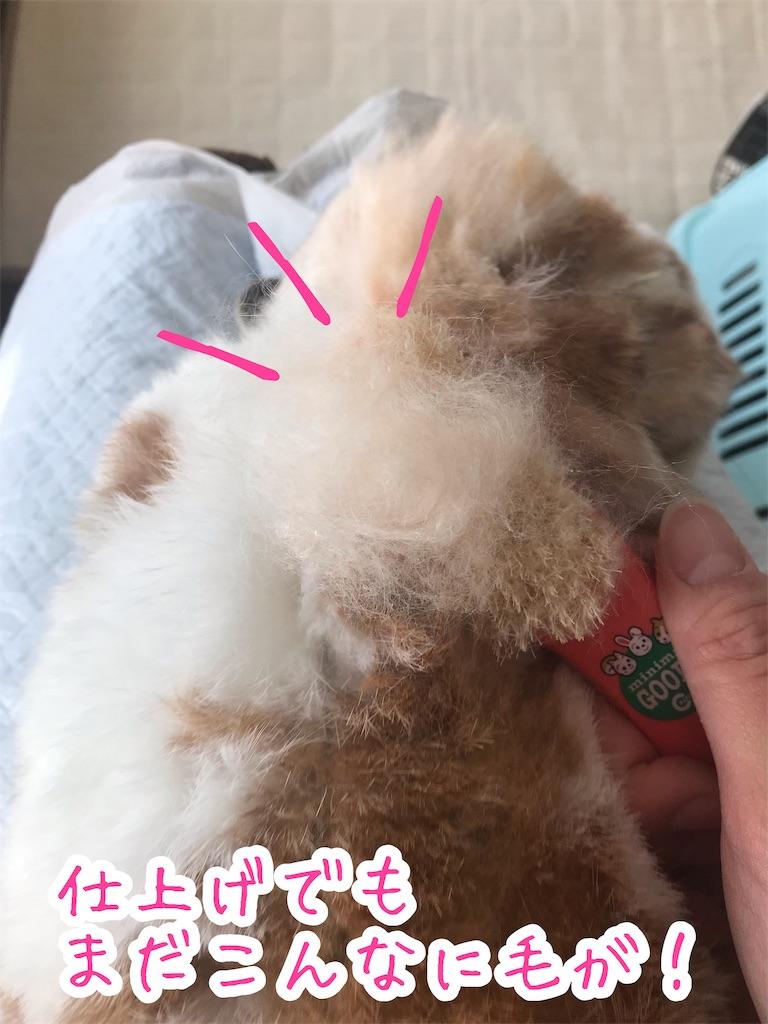 f:id:yurina12:20191204150520j:image:w300