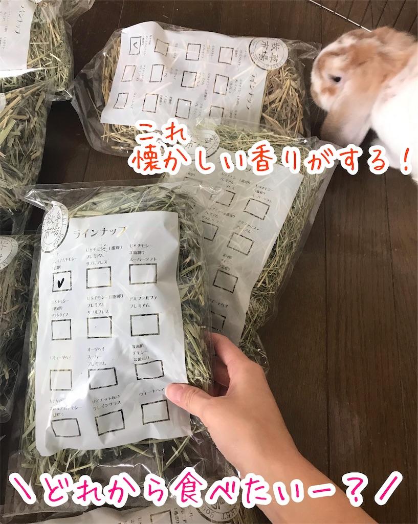 f:id:yurina12:20191206102413j:image