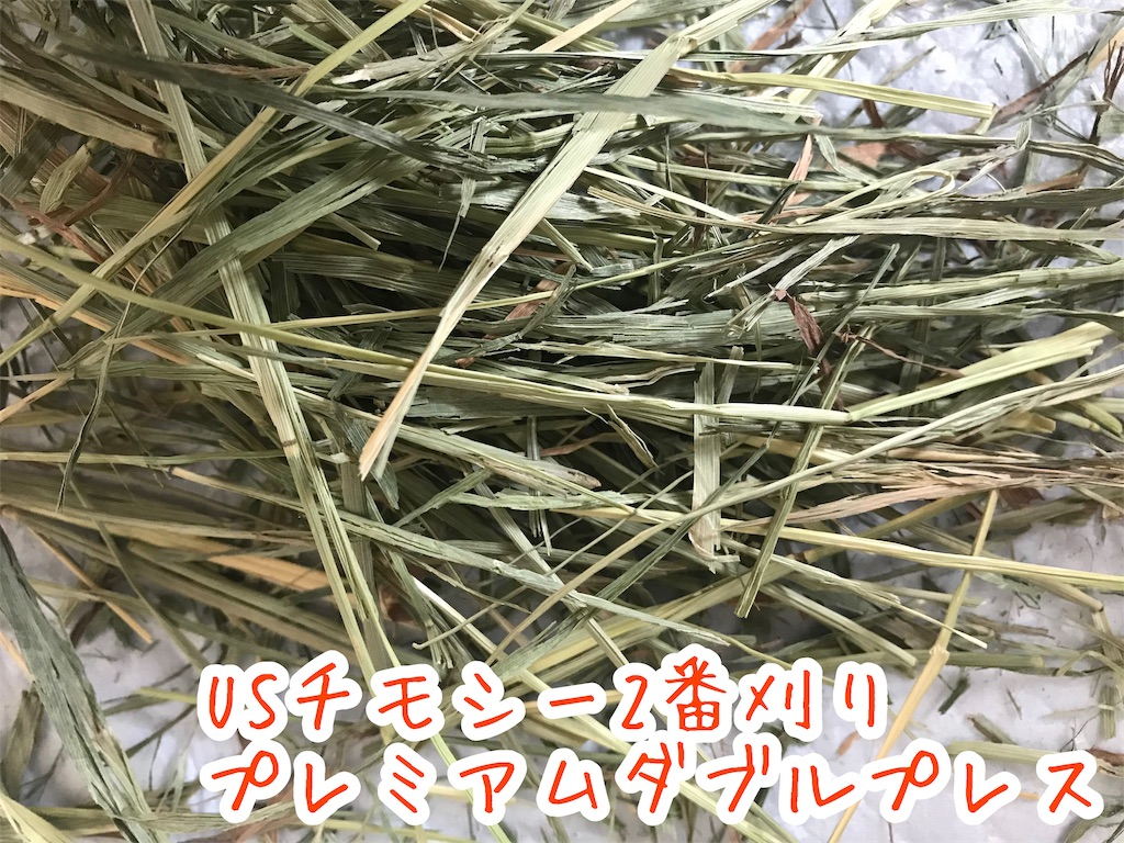 f:id:yurina12:20191206194512j:image