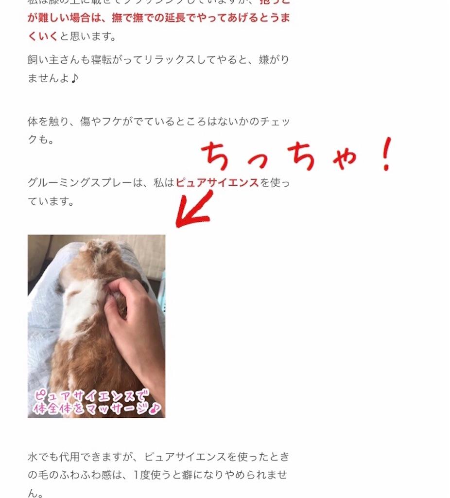 f:id:yurina12:20191207091013j:image