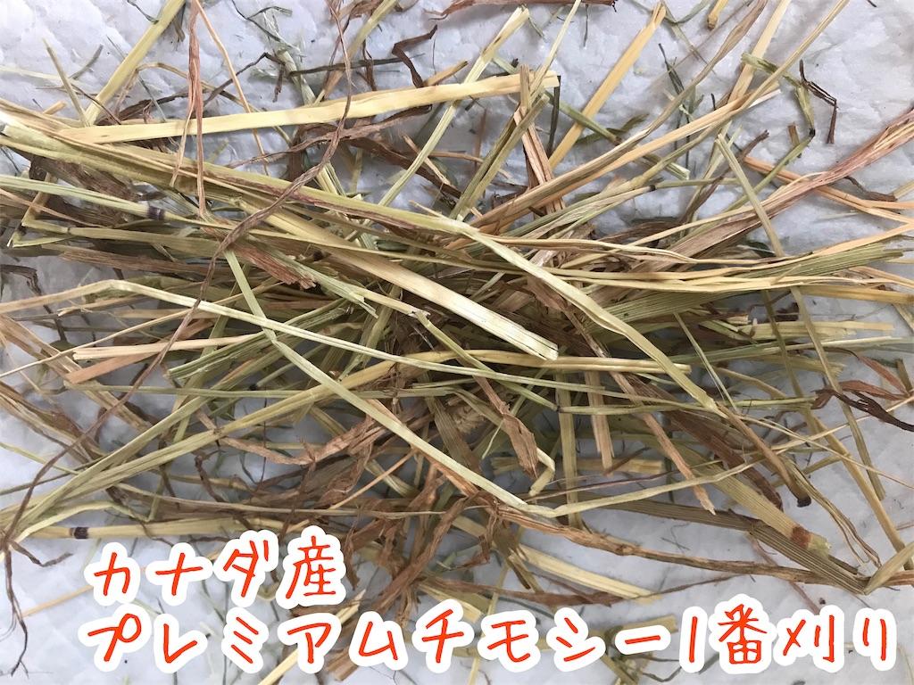 f:id:yurina12:20191211151654j:image