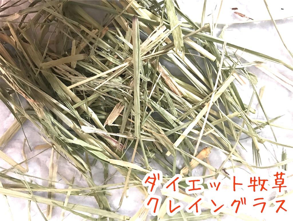 f:id:yurina12:20191211151731j:image