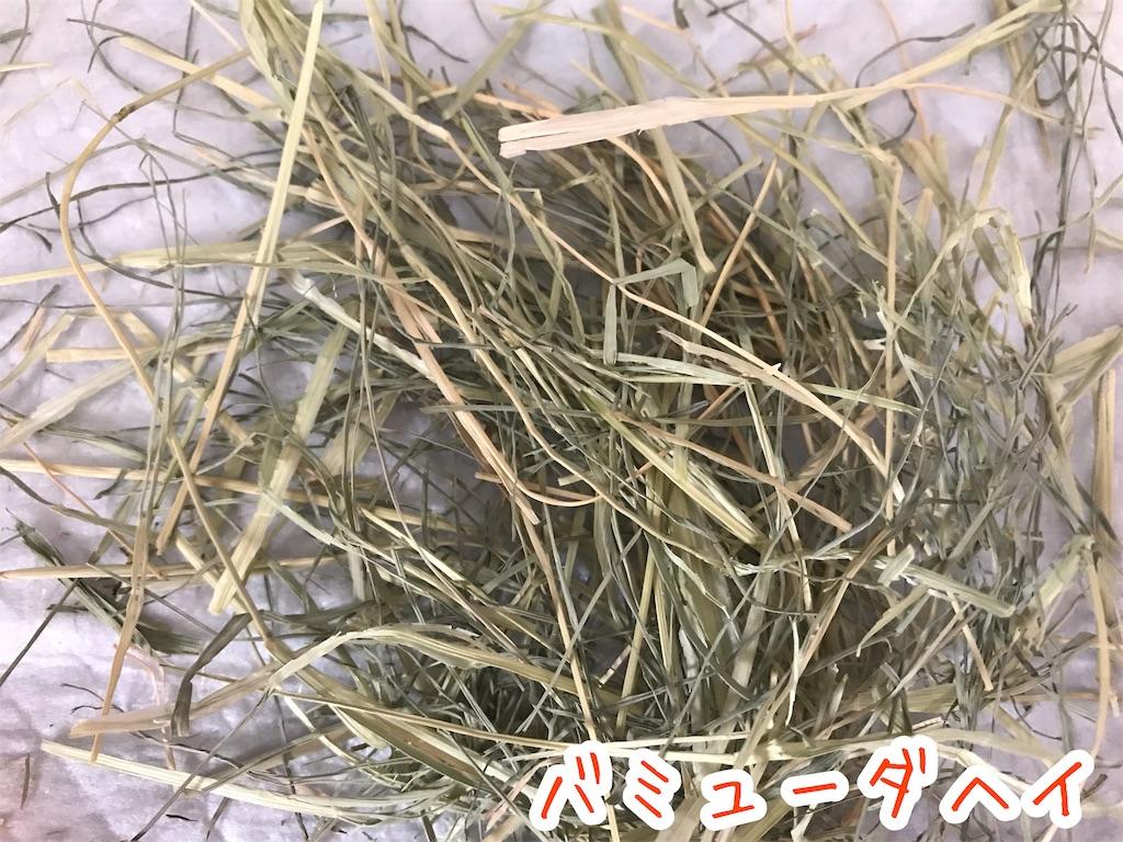 f:id:yurina12:20191211151743j:image