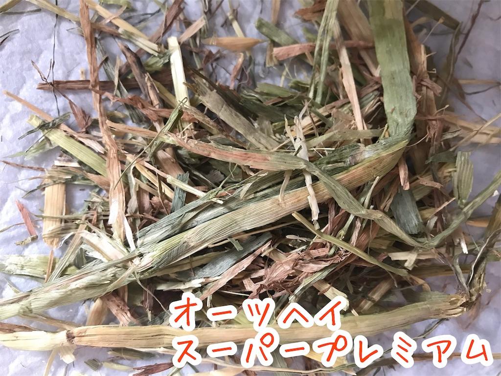 f:id:yurina12:20191211151756j:image