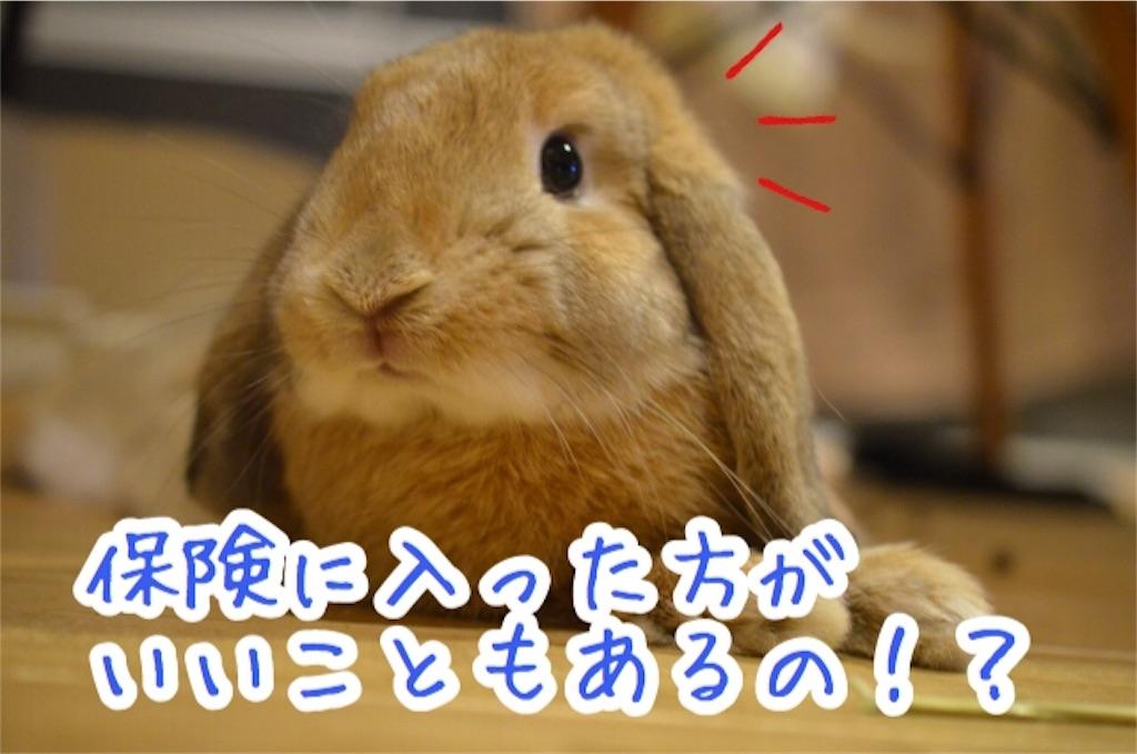 f:id:yurina12:20191221150943j:image