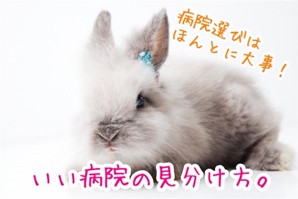 f:id:yurina12:20191221161038j:image
