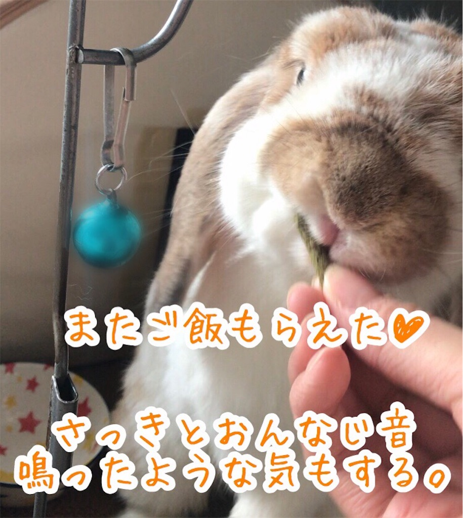 f:id:yurina12:20191227100212j:image