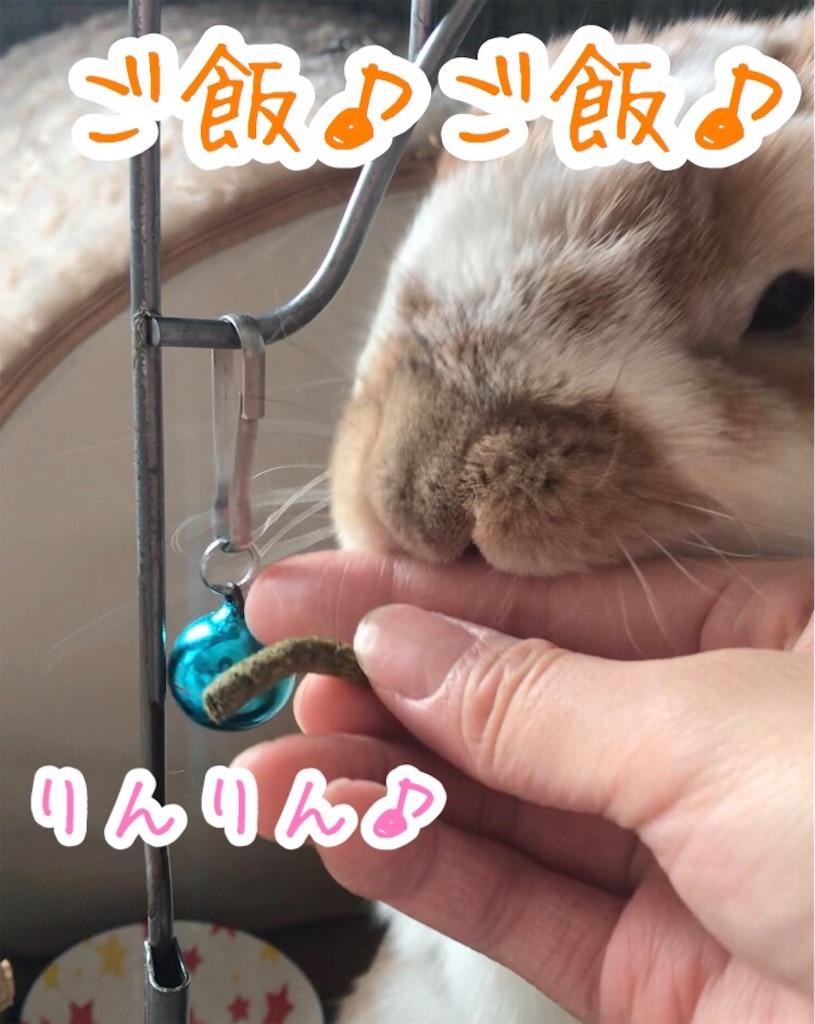 f:id:yurina12:20191227100215j:image